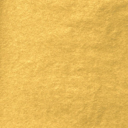 Zijdepapier - Goud - Budget - Close-up