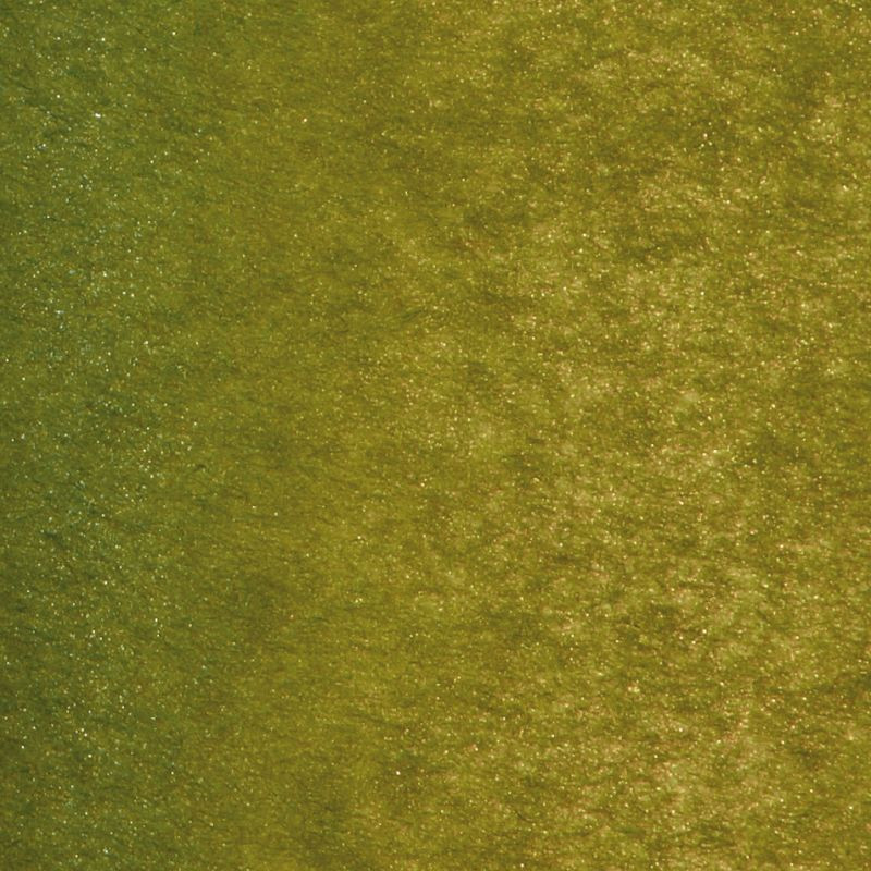 Zijdepapier - Parelmoer - Mos groen - Close-up