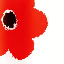 Zijdepapier - Bloemen - Rood op wit - Close-up