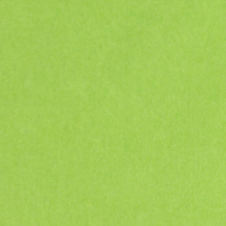 Zijdepapier - Limoen groen - Budget