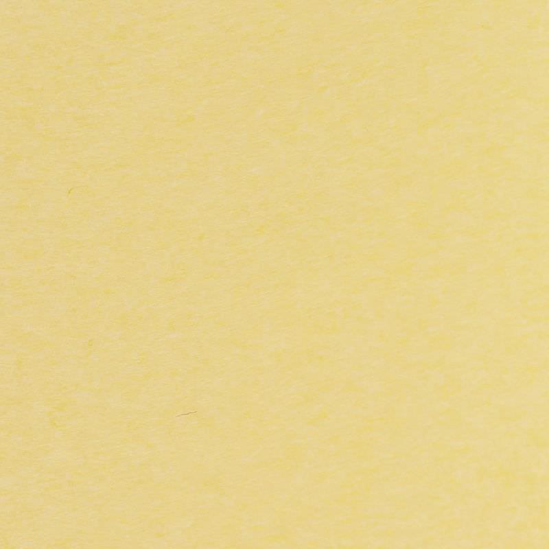 Zijdepapier - Creme - Budget - Close-up