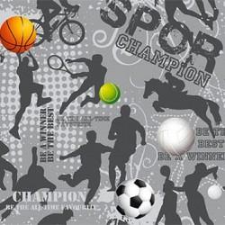 Inpakpapier - Sport - Multikleur op grijs (Nr. 3216) - Close-up