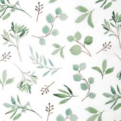 Zijdepapier - Eucalyptus - Groen op wit - Close-up