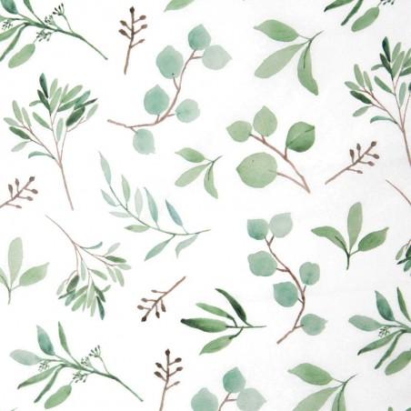 Zijdepapier - Eucalyptus - Groen op wit